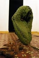 manipulating broken leaf